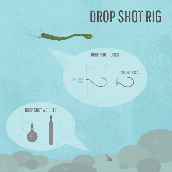 how to drop shot bass fishing