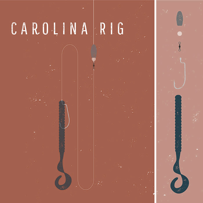 carolina rig for bass